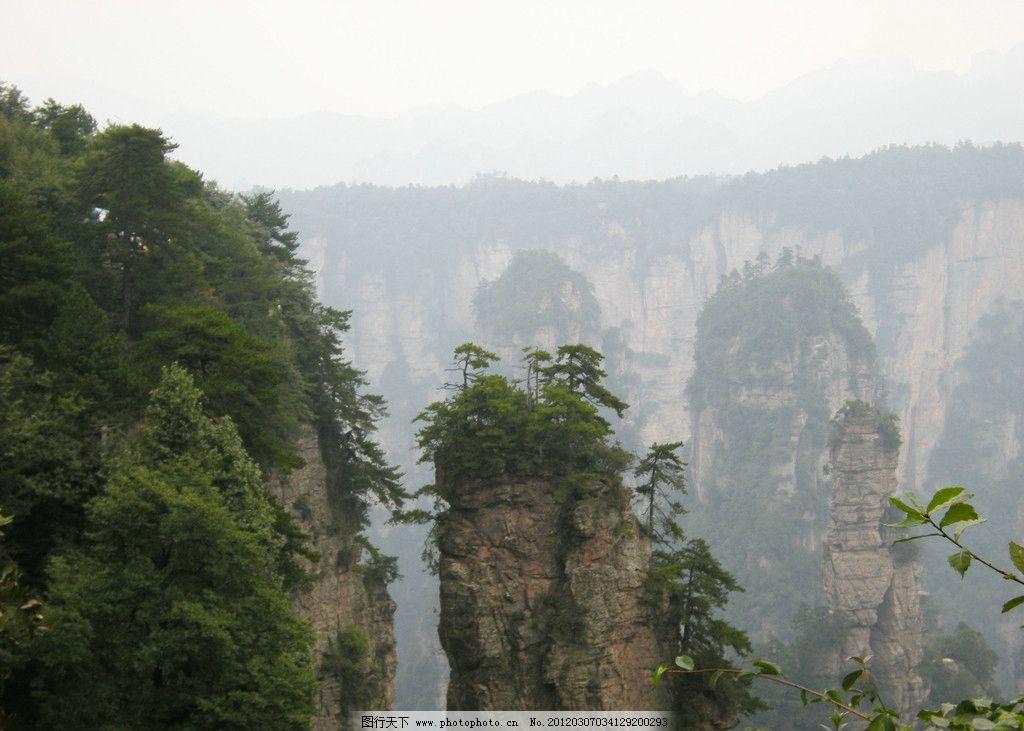 张家界山石图片,国内旅游 张家界风光 自然风景 旅游