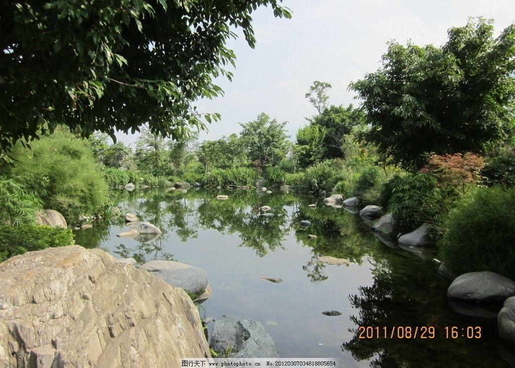 绿色风景 绿色植物 流水 石头 自然风景 自然景观 摄影 180dpi jpg