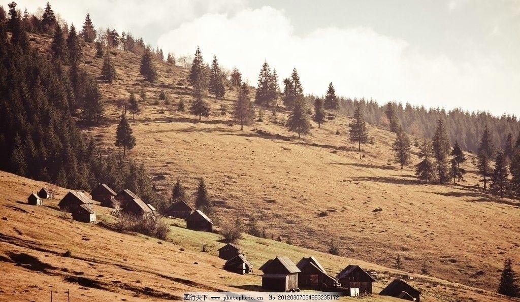 山丘 摄影 高清 小树林 落叶 房屋 荒凉 伤感 壁纸 意境 自然风景