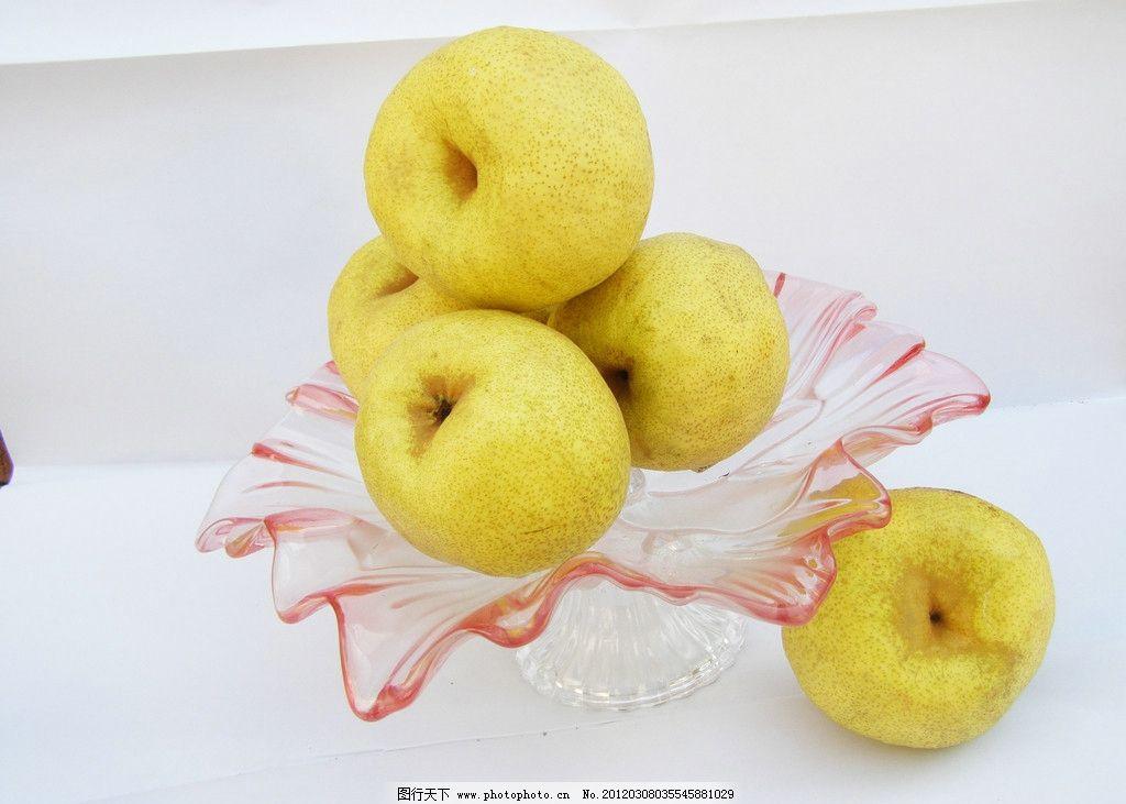 砀山梨 果盘 水果 生物世界 摄影 150dpi jpg
