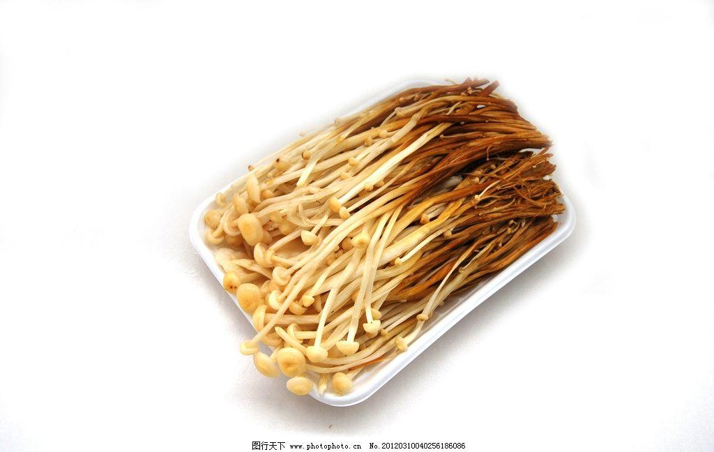 金针��ऺn(z&�_黄金针菇图片
