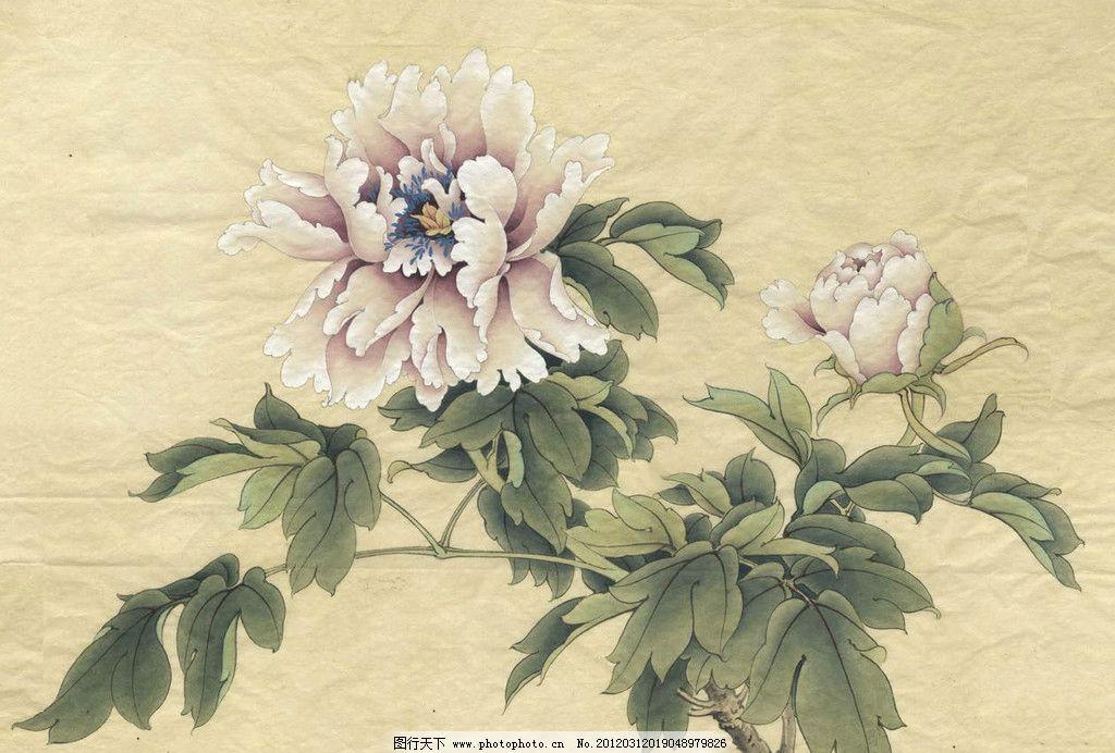 国画牡丹 绿叶 叶子 红花 国画 花卉 花 绘画 绘画艺术 绘画书法 文化