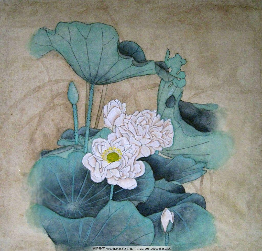 荷花 荷叶 莲蓬 国画 花卉 花 绘画 绘画艺术 绘画书法 文化艺术 设计