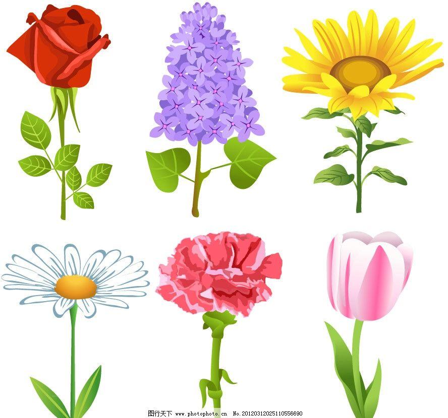 手绘鲜花矢量 手绘 鲜花 玫瑰 丁香花 太阳花 菊花 花朵 花卉 矢量 草