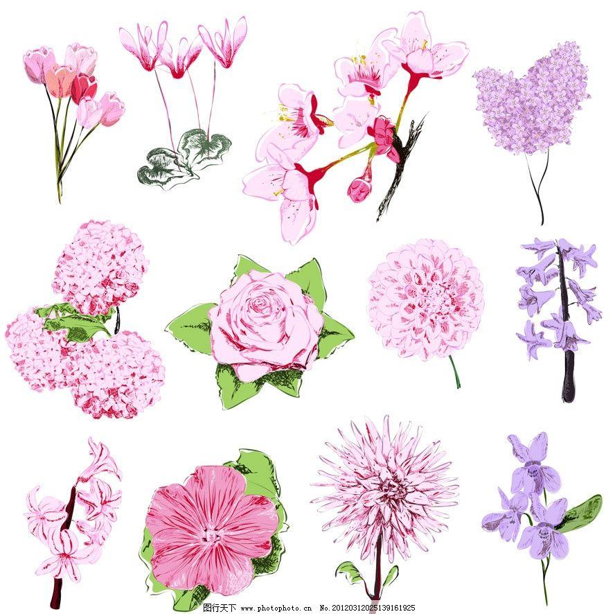 手绘鲜花矢量 手绘 鲜花 玫瑰 丁香花 兰花 花朵 花卉 矢量 草地绿草