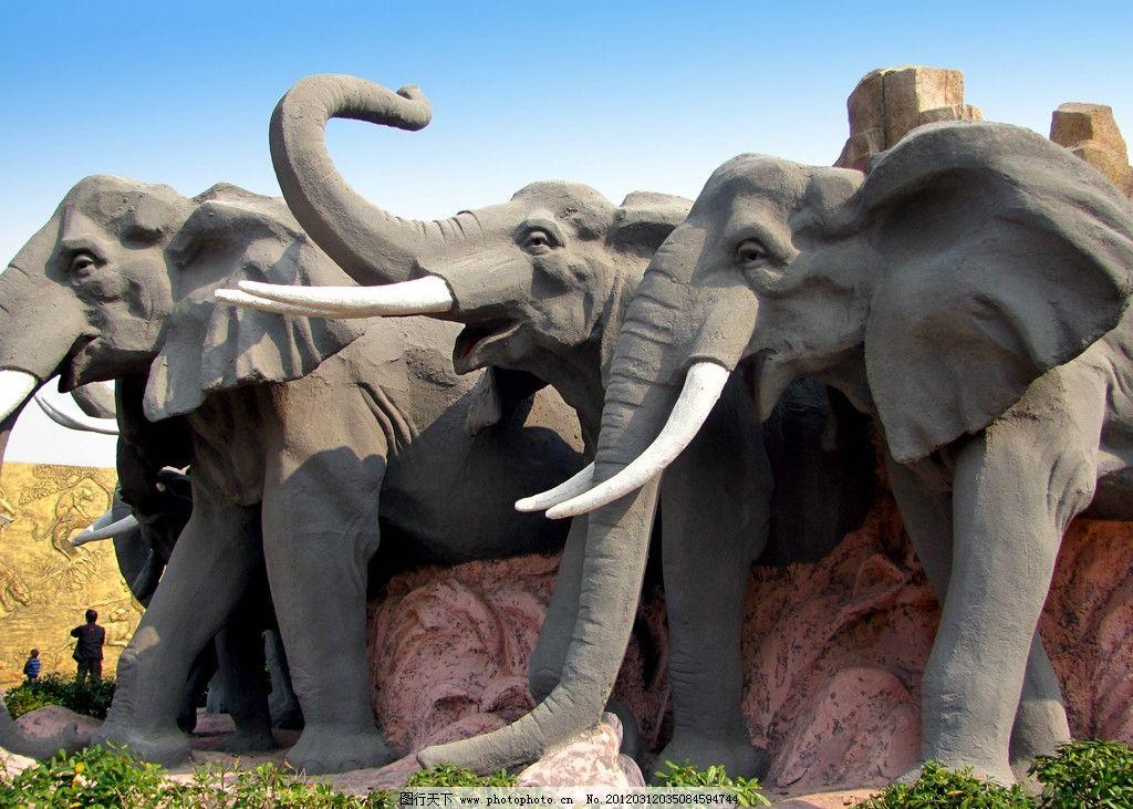 大象 动物 生态动物园 野生动物 生物世界 摄影 180dpi jpg