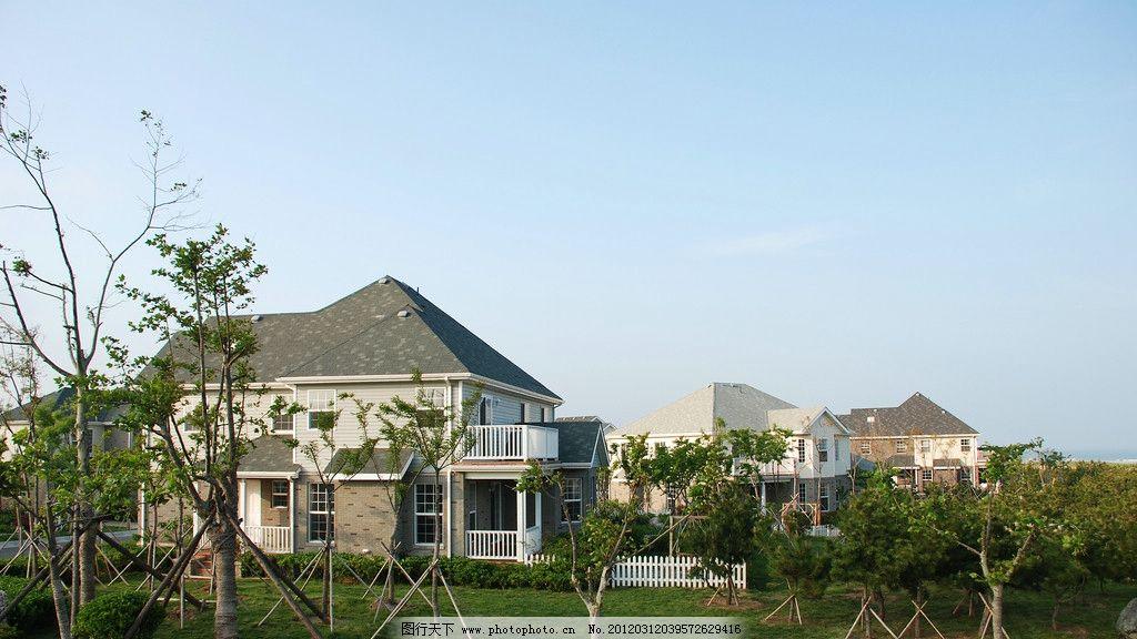 植树造林 种树 植树 树苗 庭院 园林建设 别墅 建筑 环保 园林建筑
