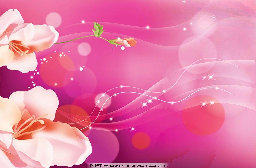 木兰花设计 鲜花 壁画设计 唯美 清新 客厅 大花 背景底纹 底纹边框