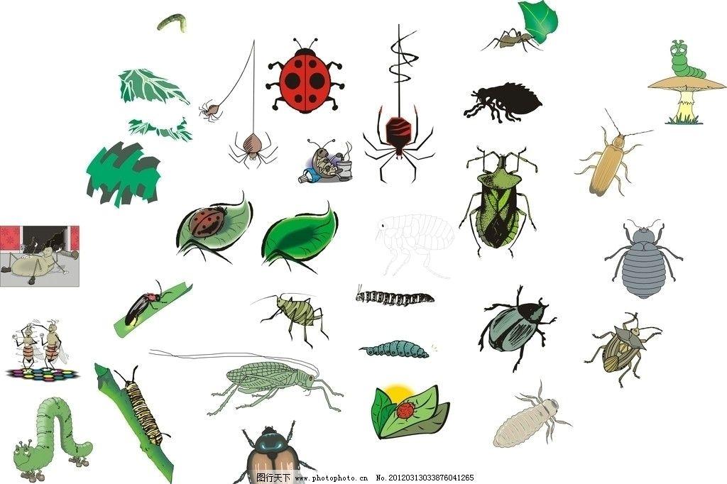 虫子简笔画步骤