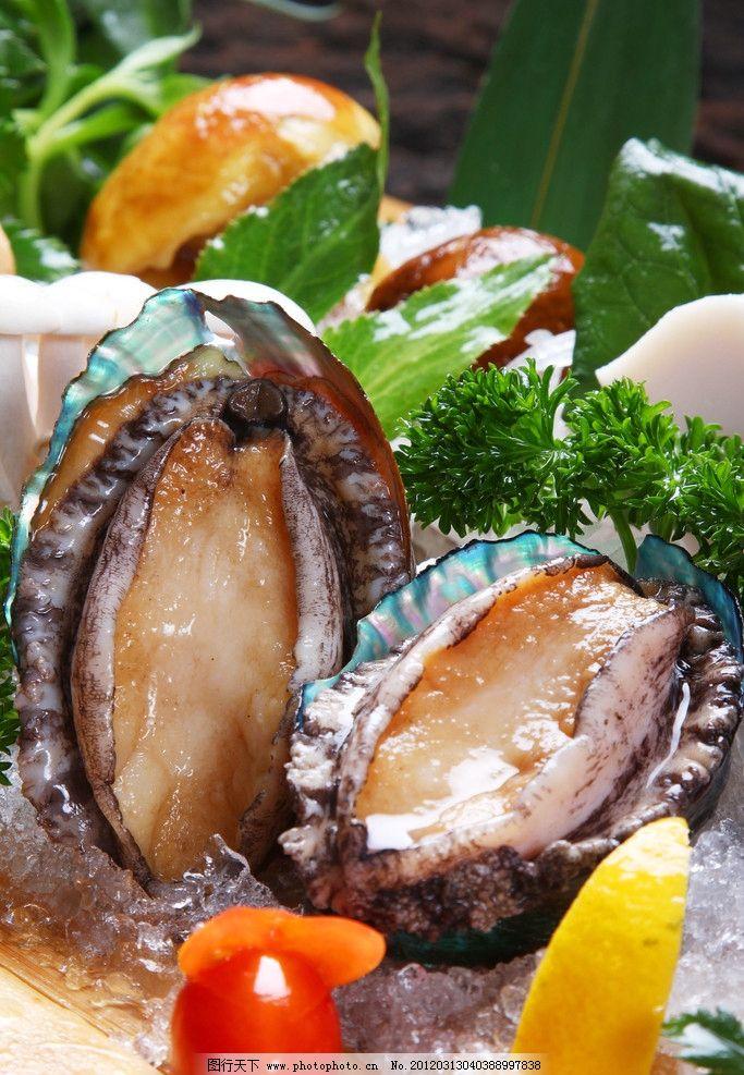 鲍鱼 海鲜 菜品 美食 美食摄影 大连鲍鱼 西餐美食 餐饮美食 摄影 72