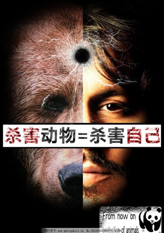 保护动物 公益海报图片