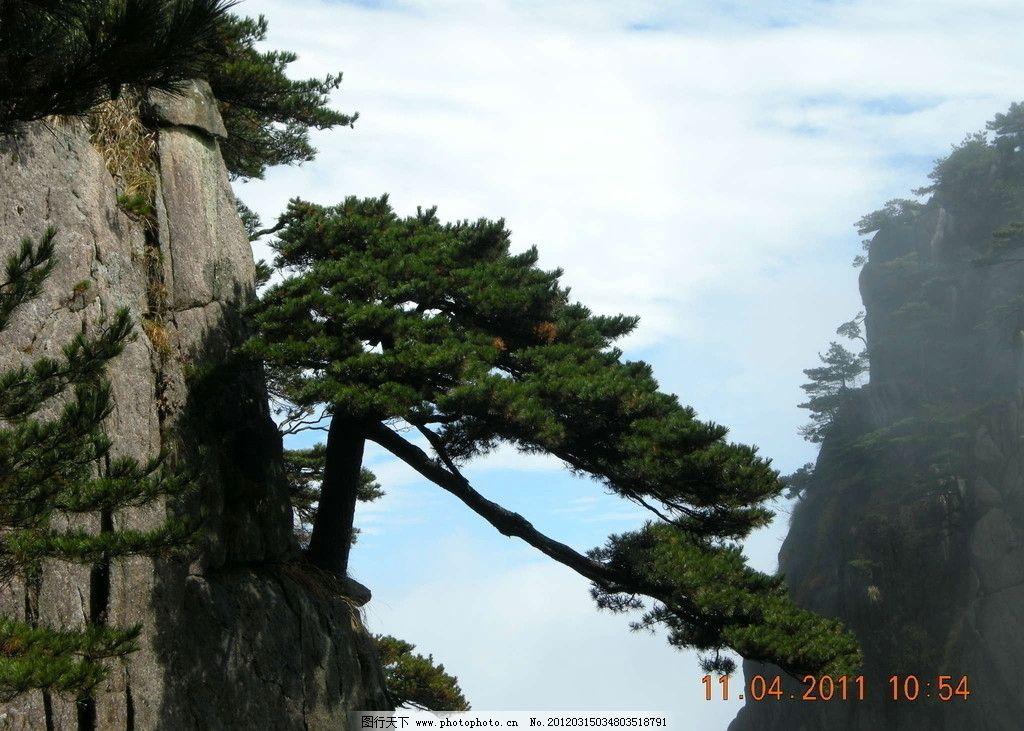 迎客松 山 黄山 风景 自然风景 自然景观 摄影 300dpi jpg