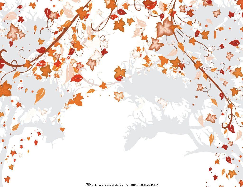 边框 花纹 底纹边框背景 枫叶 树叶 背景底纹