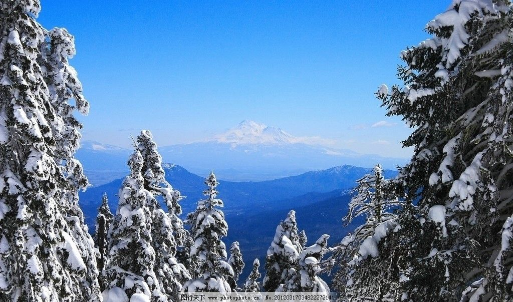 雪景 樹林 雪山 藍天 自然 生態環境 壁畫 壁紙 風景 背景
