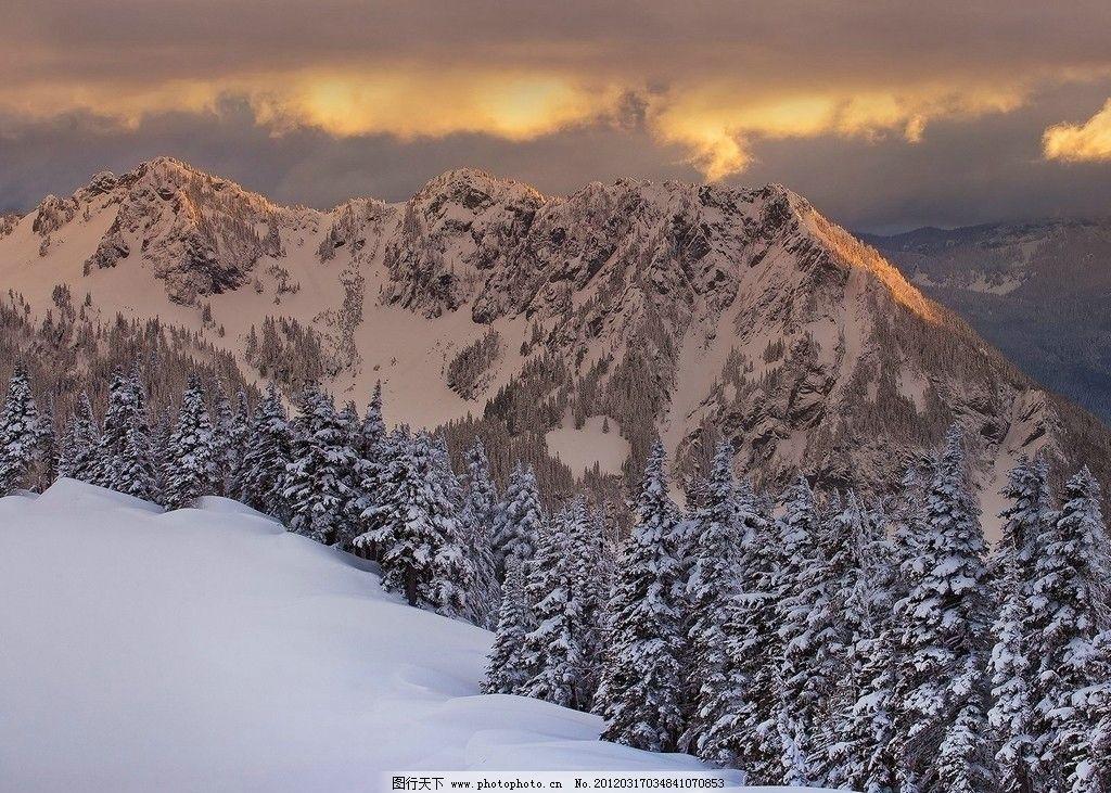 夕陽雪景 陽光 樹林 雪地 雪山 自然 生態環境 壁畫 壁紙 風景