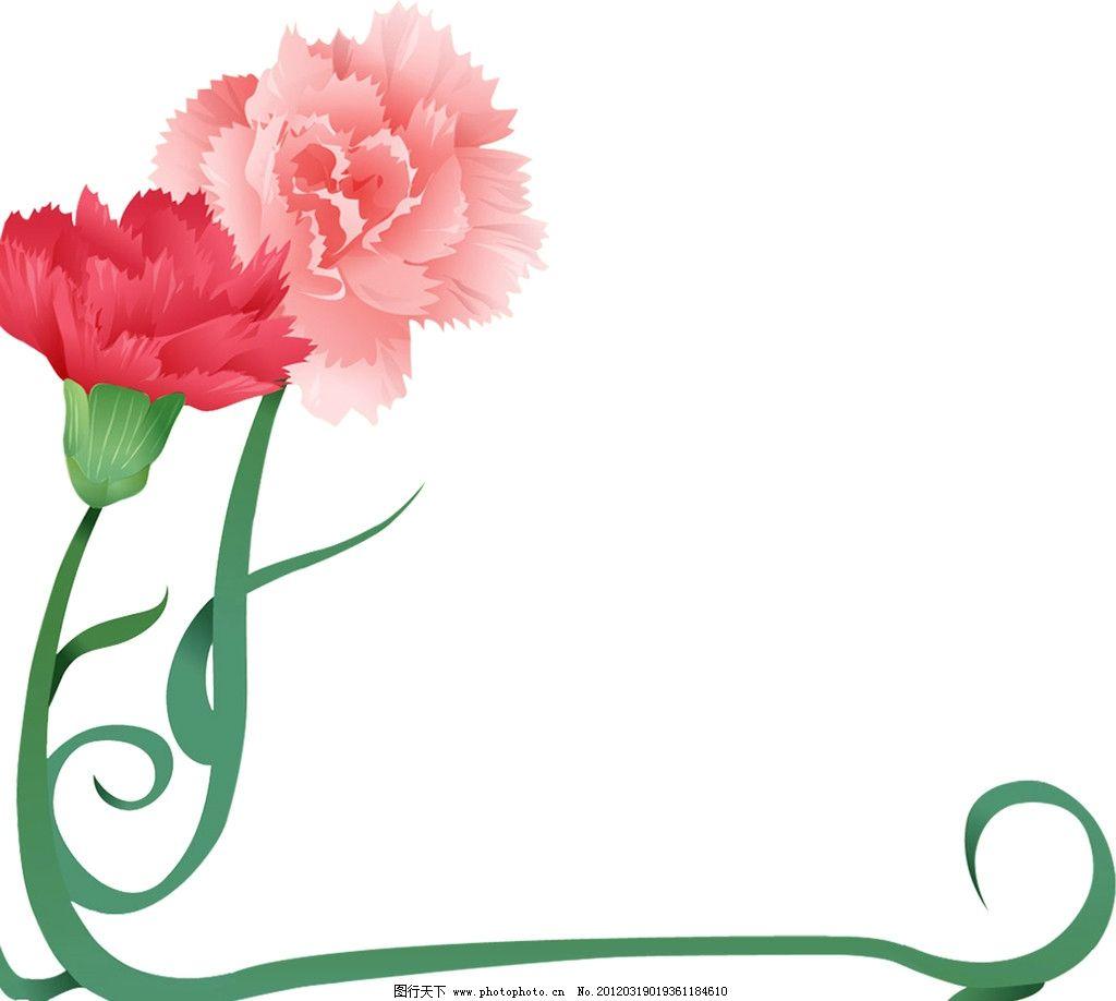 透明背景康乃馨 康乃馨 母亲节 花 背景透明 红花 画框 像框 花边 花