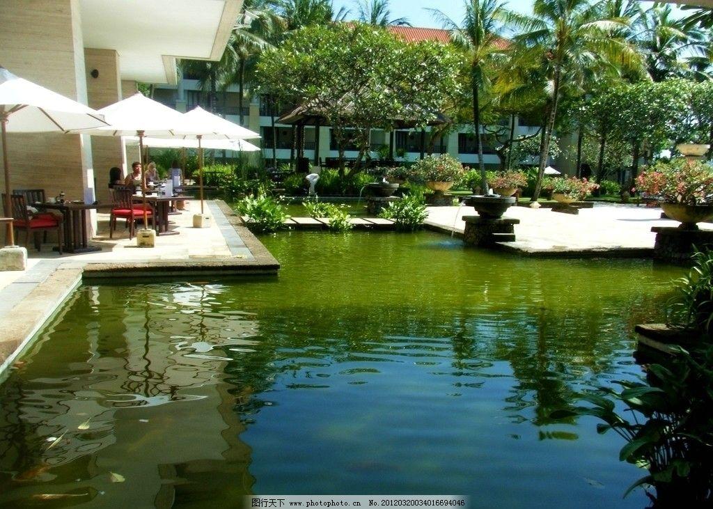 巴厘岛港丽酒店自助餐厅 水池 碧绿 阳光 庭院 特色 景观 院子