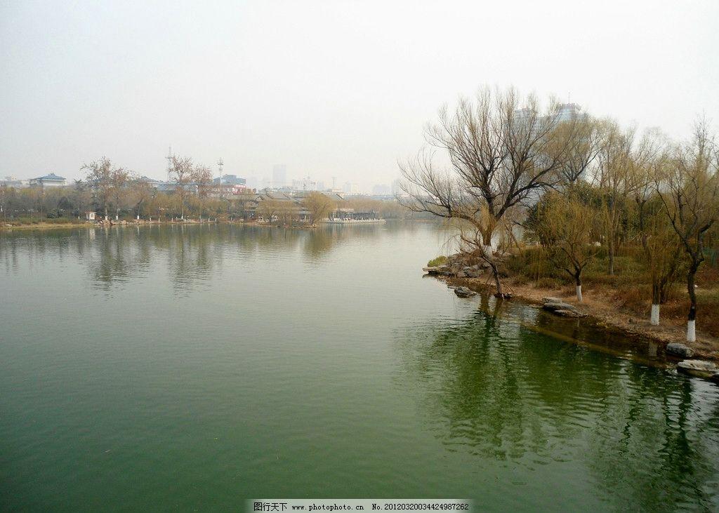 柳树 湖 山水风景 自然景观 摄影 72dpi jpg