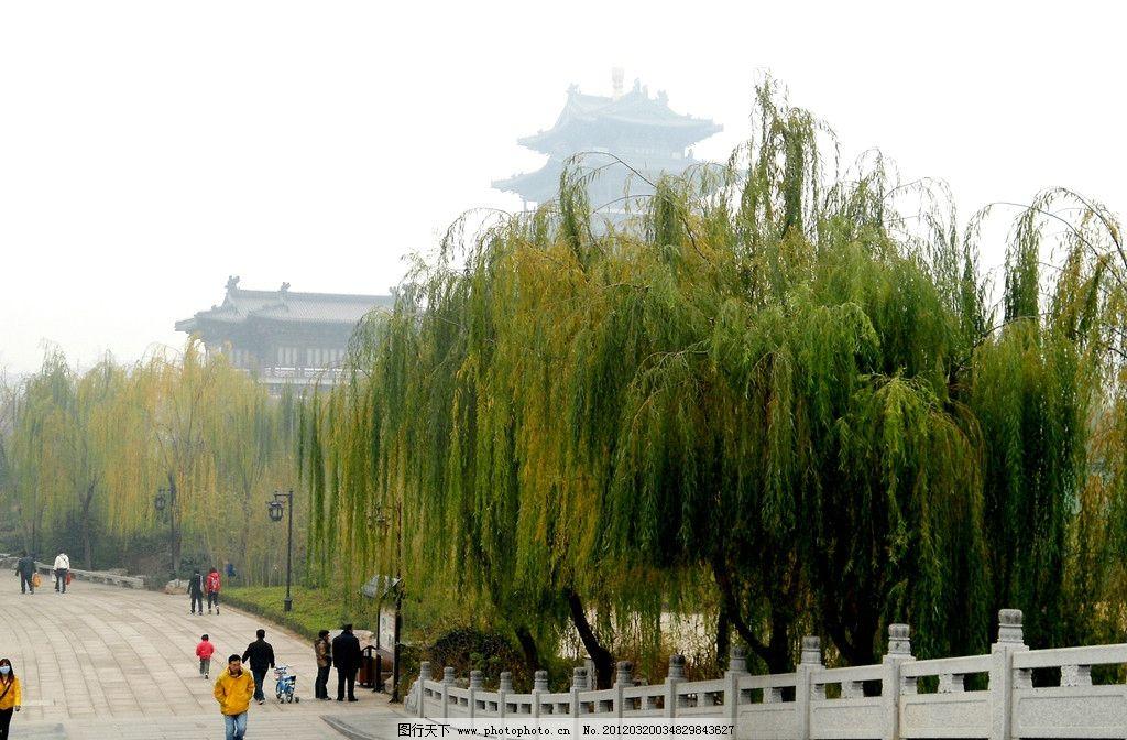大明湖的柳树 大明湖 柳树 桥 自然风景 自然景观 摄影 72dpi jpg