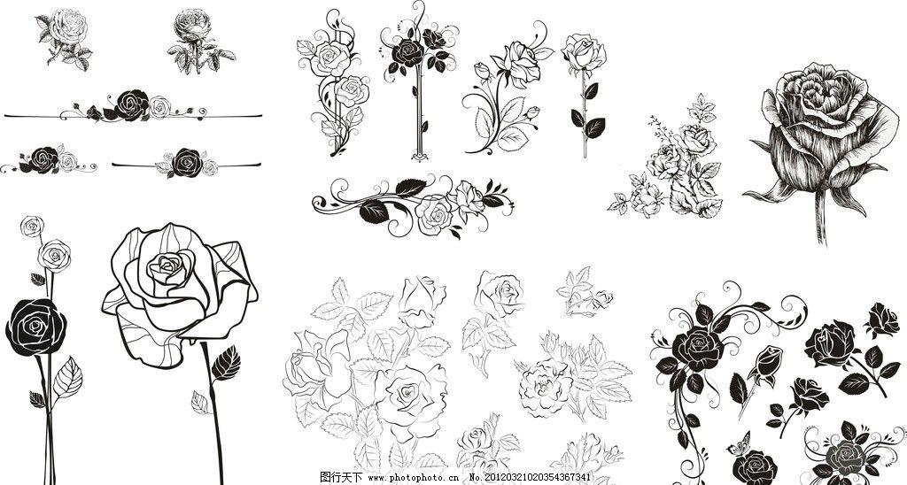 玫瑰花朵 玫瑰 花朵 花瓣 花蕊 叶子 手绘 线条 花边 矢量素材 cdr