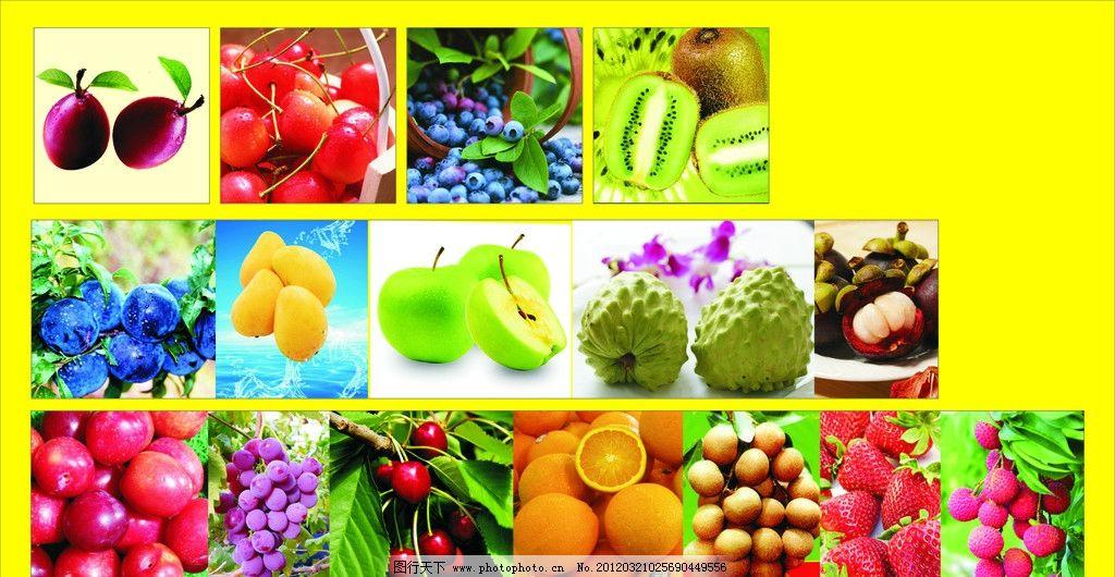 水果 橙子 芒果 车厘子 车李子 苹果 草莓 荔枝 水果大全 水果图片