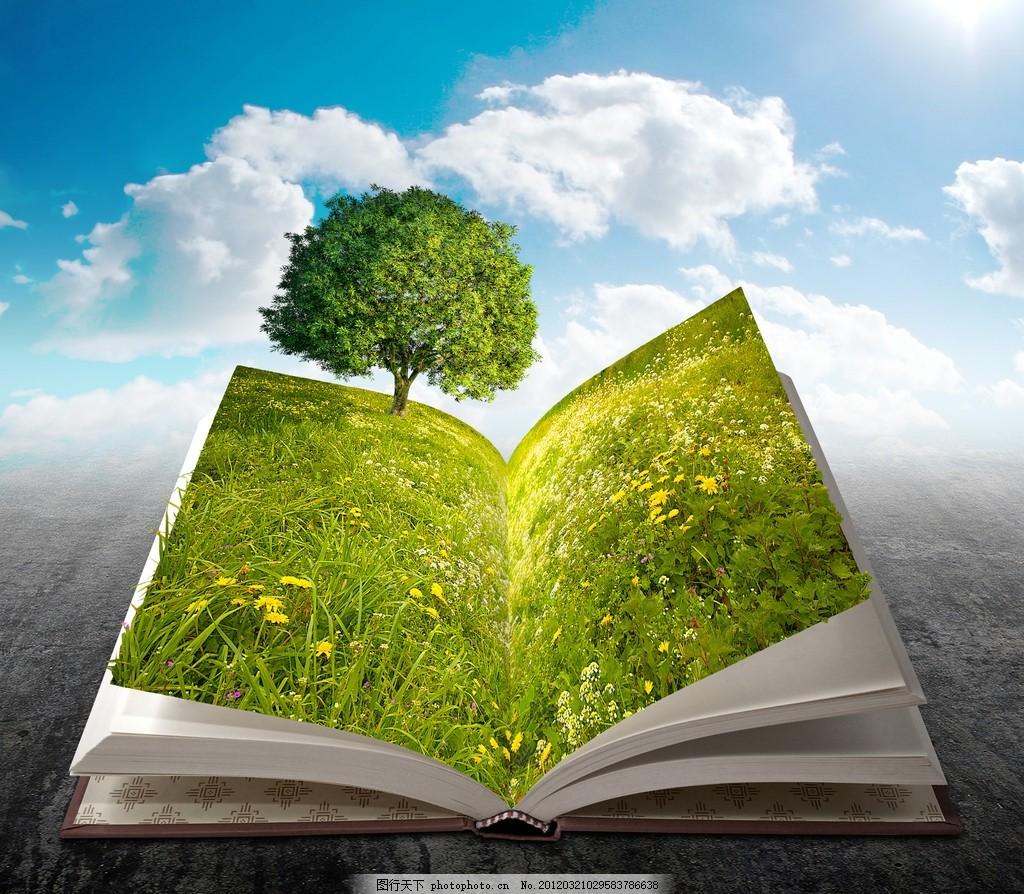 图书中的风景