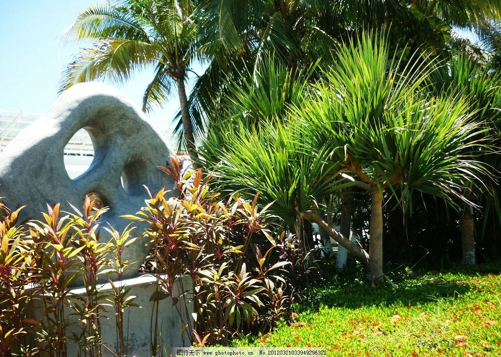 海南酒店门前椰树图片