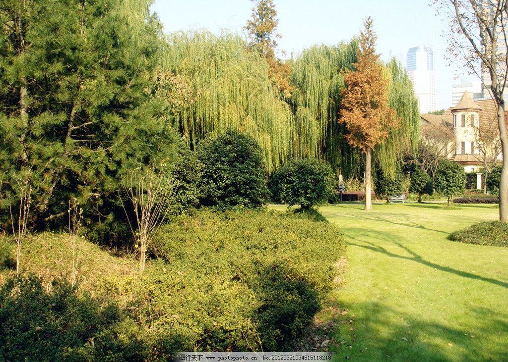 公园风景 树木 绿叶 黄叶 蓝天 建筑 阳光倒影 草地 自然风景