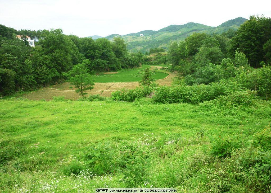 春天郊外风景 绿色 田野 背景 草地 树木 山峦 自然风景 自然景观