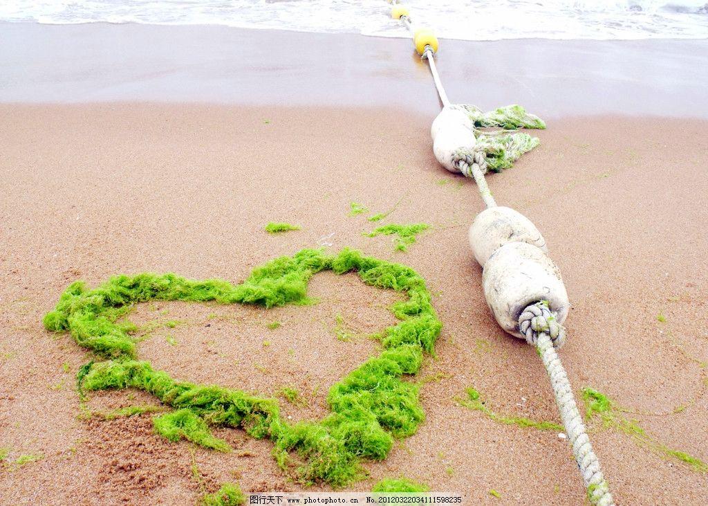 沙滩海藻风景图片 沙滩 海藻 紫色 泥沙 草 海边 绿色 风景 摄影 旅游