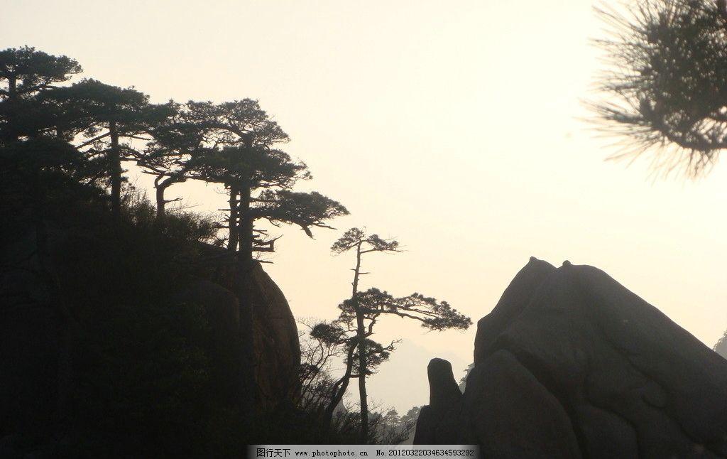高山树林 高山 树 天空 石头 树木 大山 风景名胜 自然景观 摄影 72