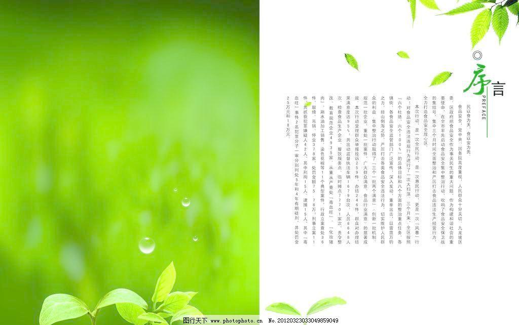 序言 单页 广告设计模板 画册 画册设计 环保 绿草 水滴 序言素材下载
