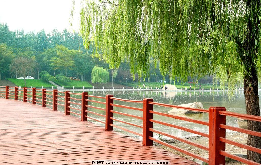 公园小桥 桥 树 湖 水 树木 天空 树叶 风景 自然风景 自然景观 摄影