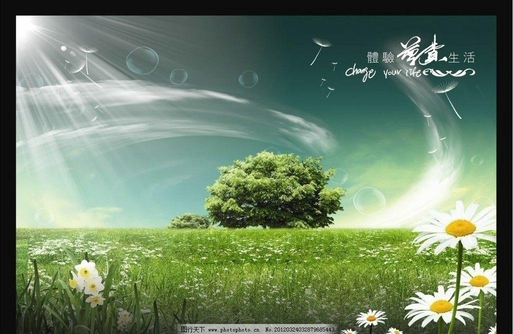 春天风景 春游 蒲公英 阳光 体验生活 树 绿地 源文件