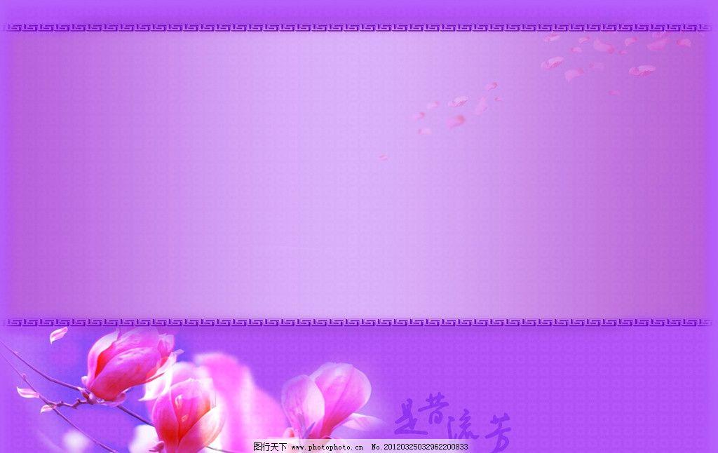 古典背景 玉兰 木兰 紫色 摄影背景 古风 中国风 摄影边框 花瓣 背景