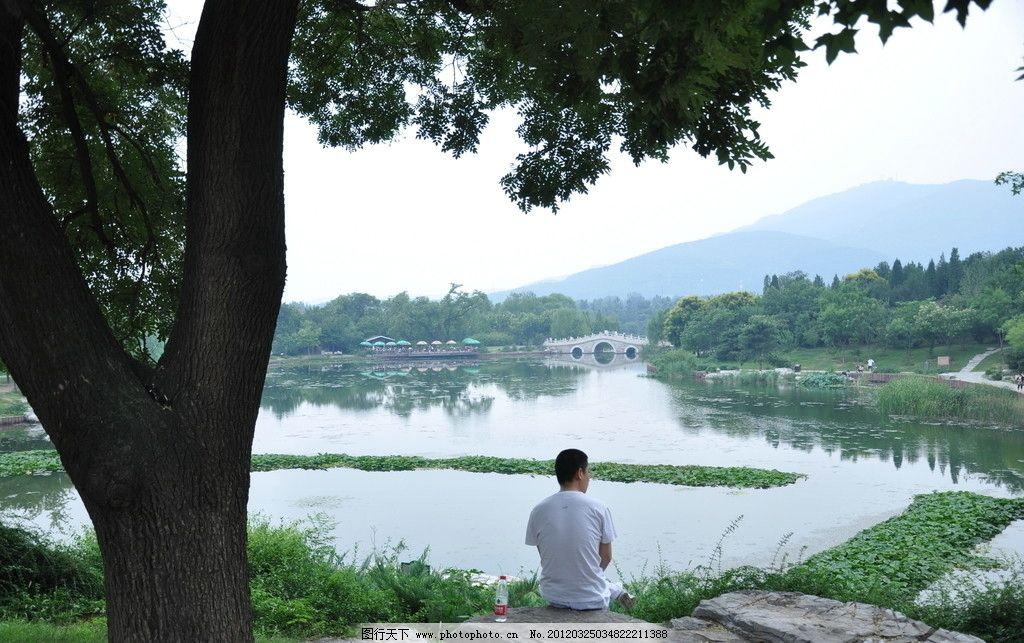 湖畔风景图片