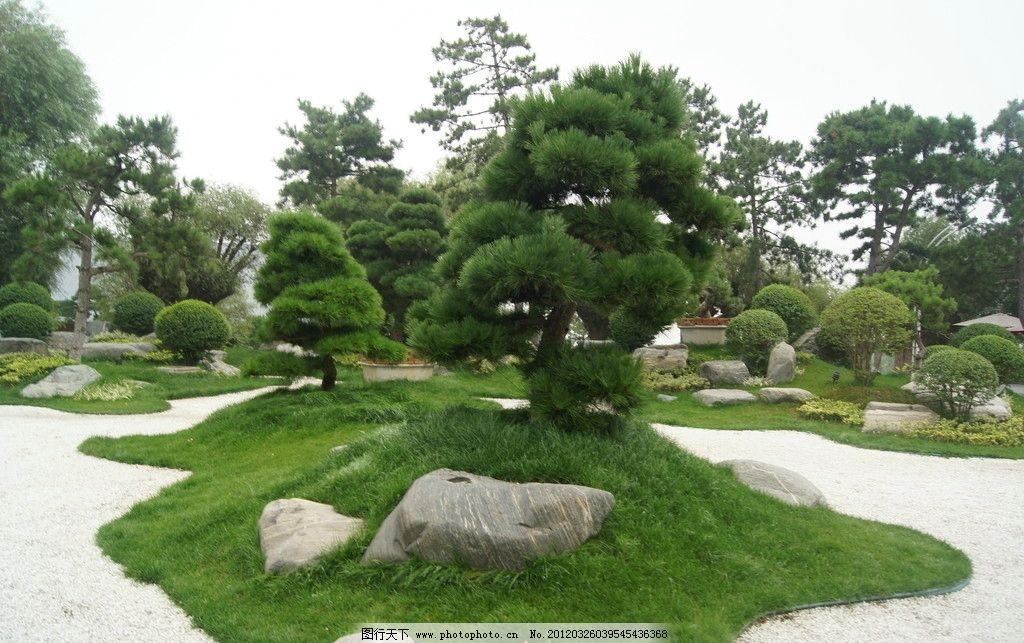 景观园林照片 唐苑 景观 景观小品 景观设计 唐式风格 日本风格 树木