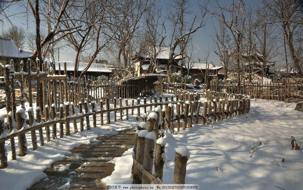 雪中小路 摄影 雪景 树林 雪后 风景 小路 院落 风景摄影 西沽公园