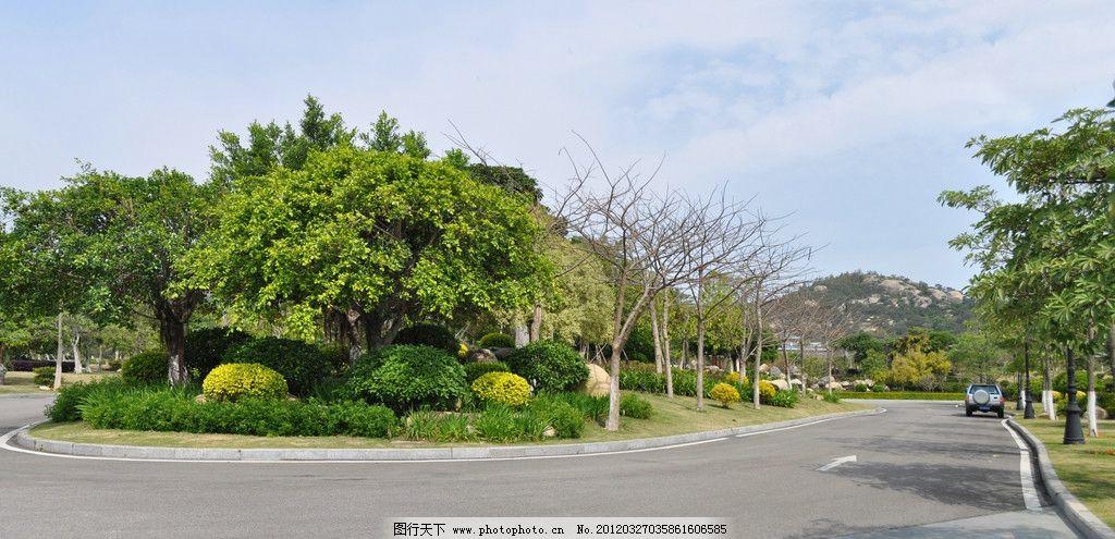 厦门绿化景观 绿化 乔木 道路 山庄 公园景观参考图片 自然风景 自然