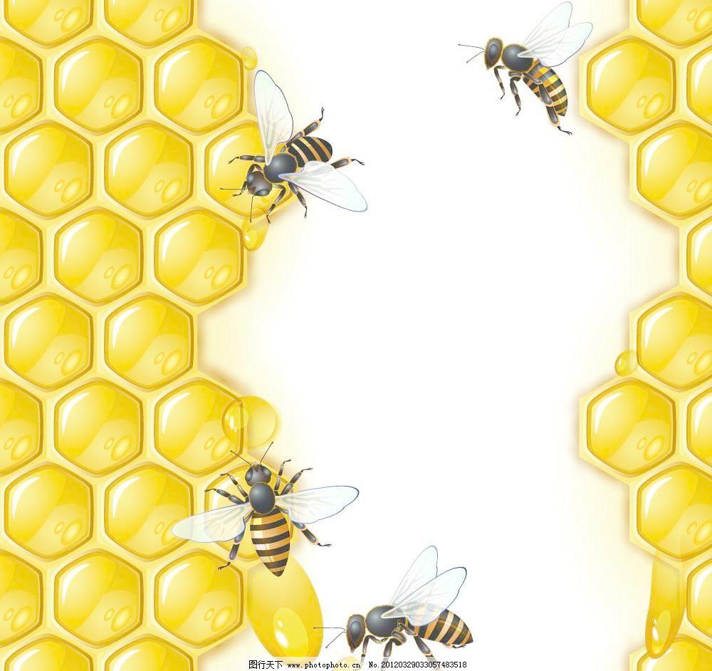 可爱蜜蜂花纹边框