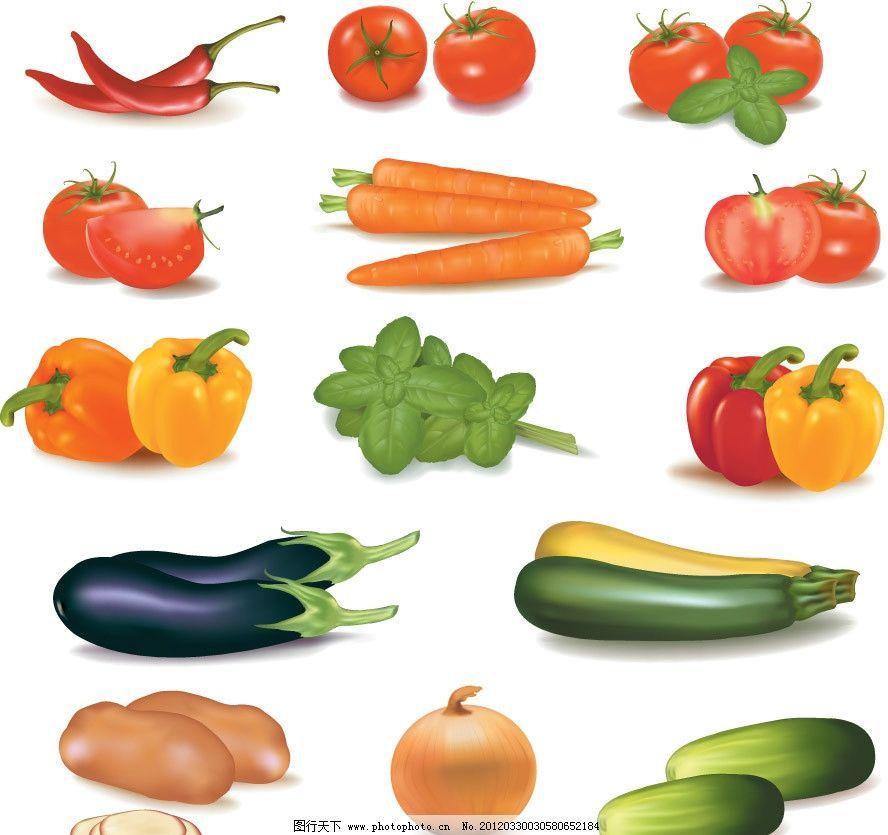 手绘蔬菜矢量 尖椒 西红柿