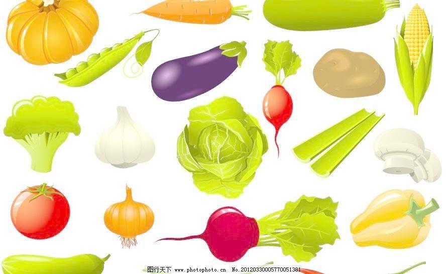 手绘 蔬菜 西红柿