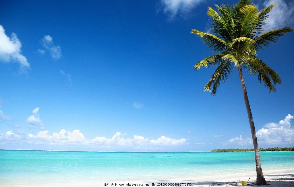 海边美景 海岸 度假 大海 蔚蓝 风景 蓝天 彩云 沙滩 椰子树