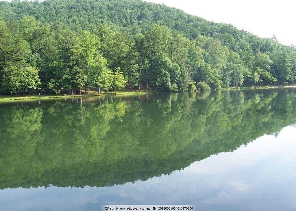山水 风光 水天一色 小河 湖泊 河流 自然 森林 树木 大树 绿色 风景