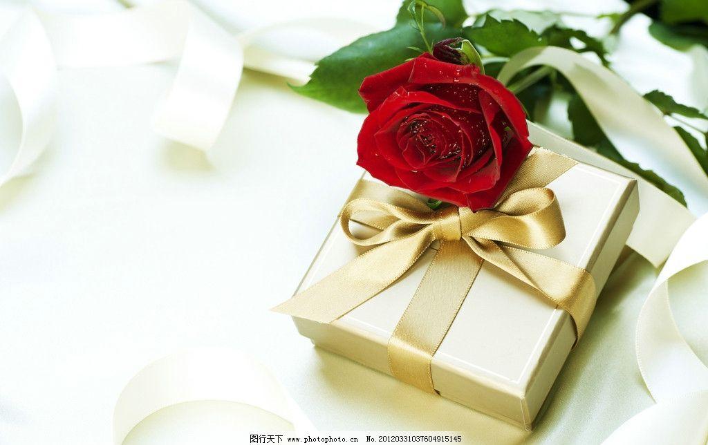 玫瑰礼物 礼品盒 情人节 丝带 蝴蝶结 婚礼 卡片 玫瑰花 丝绸